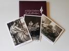 Feigenblatt-Postkartenset